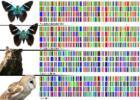"""Тренинг-ДНК технологии"""